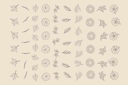 autumnue procreat brushes 1 download now brushes pack