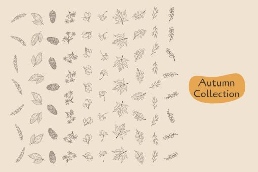 autumnue procreat brushes 3 download now brushes pack