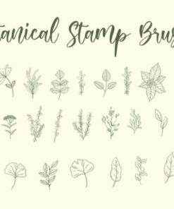 botanical stamp brushes graphics 6921798 3 580x387 download now brushes pack