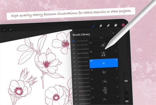 procreate cherry blossom stamps 1 download now brushes pack