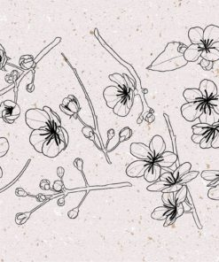 procreate cherry blossom stamps 5 download now brushes pack
