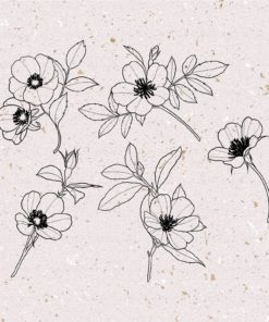procreate cherry blossom stamps 8 download now brushes pack