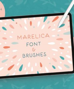 marelica font procreate brush intro download now brushes pack