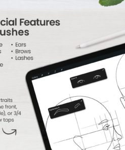 portrait bundle for procreate display features download now brushes pack