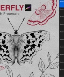 butterfly procreate stamps brush ( ) brushespack