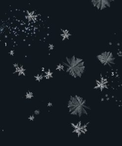 winter magic brushes for procreate 1 download now brushespack
