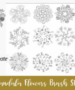 procreate brushes stamp mandala ep graphics x download now brushespack