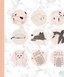 procreate cat stamp brush graphics x download now brushespack