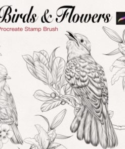 birds and flowers stamp for procreate graphics x download now brushespack