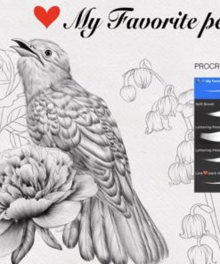 favorit pencil procreate graphics x download now brushespack