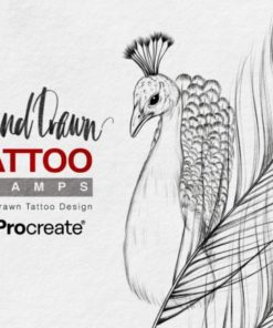 hand draw procreate stamps brush graphics x download now brushespack