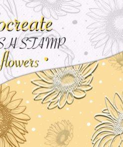 procreate brush stamp sunflowers graphics x download now brushespack