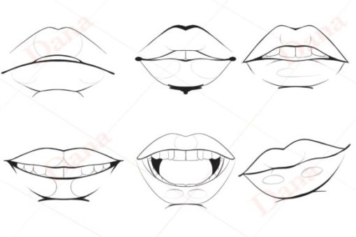 procreate lip stamp brushes graphics x download now brushespack