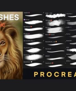 procreate oil painting brush graphics x download now brushespack