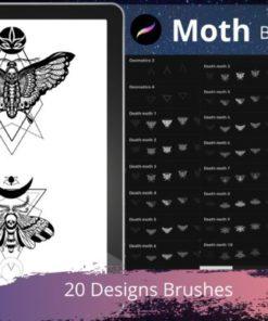 procreate stamp brushes moth geomatics graphics x download now brushespack