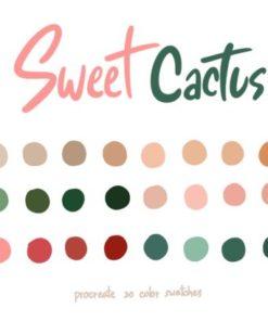 sweet cactus graphics x download now brushespack