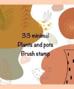 tree flower pot procreate brush stamp graphics x download now brushespack