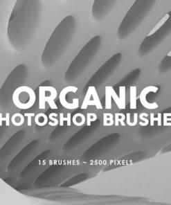 organic photoshop stamp brushes brushespack