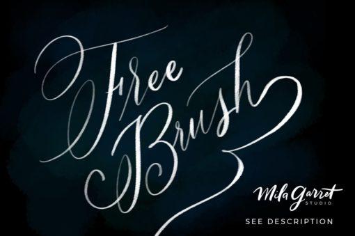 procreate lettering brush bundle ( ) brushespack